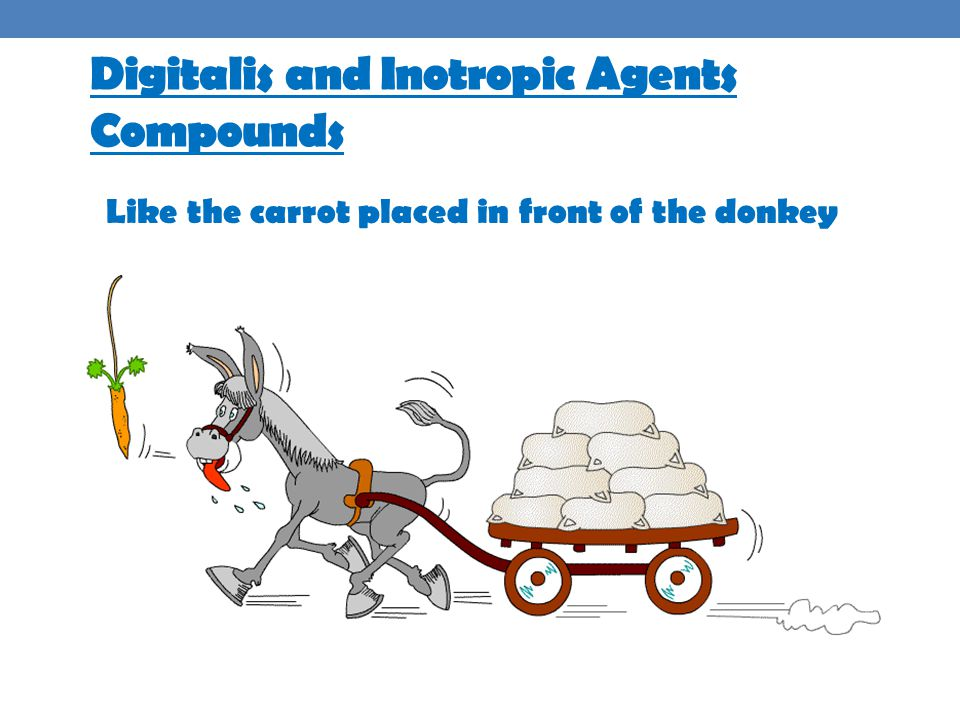 Digitalis and Inotropic Agents Compounds Like the carrot placed in front of the donkey