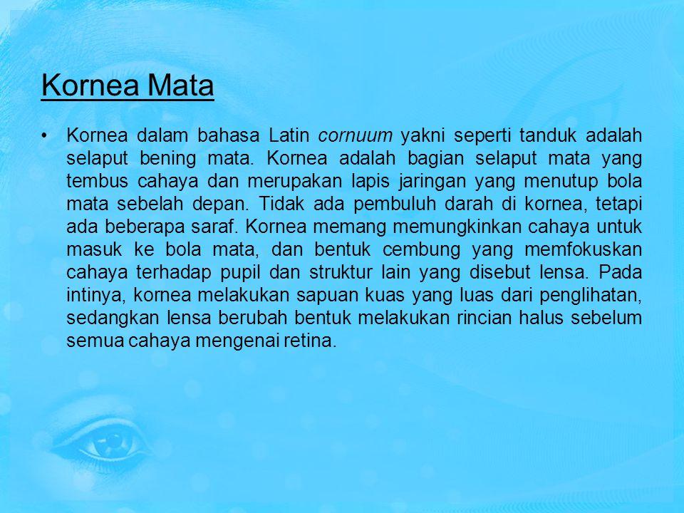 Kornea Mata Kornea dalam bahasa Latin cornuum yakni seperti tanduk adalah selaput bening mata. Kornea adalah bagian selaput mata yang tembus cahaya da