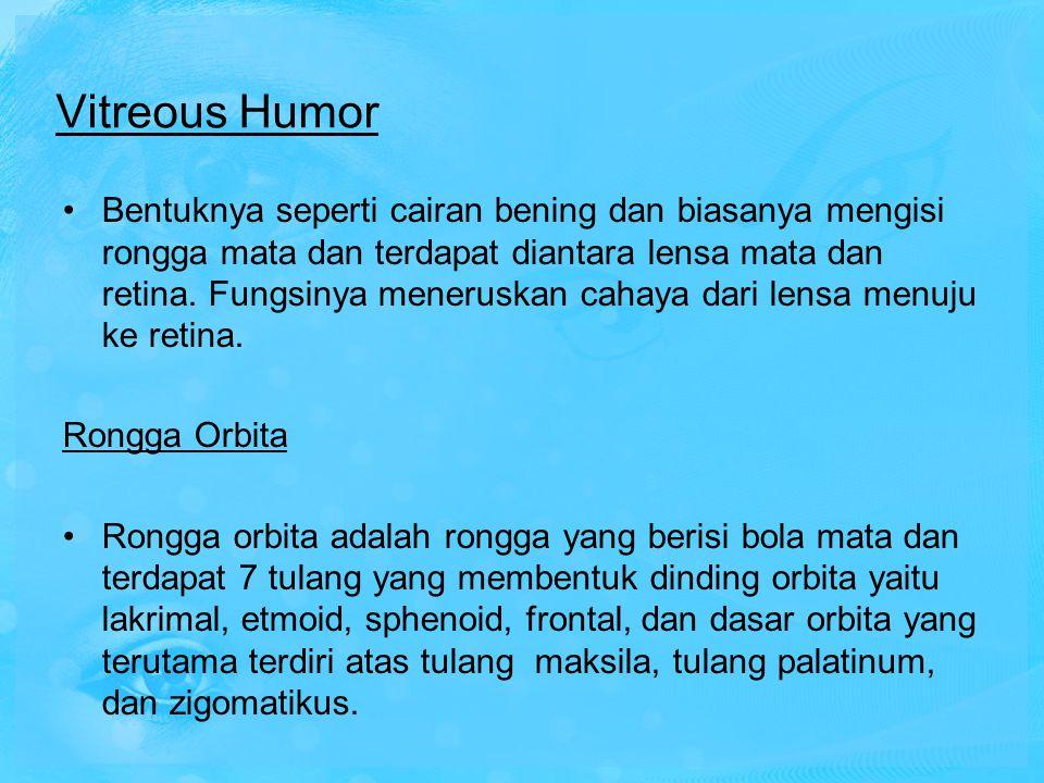 Vitreous Humor Bentuknya seperti cairan bening dan biasanya mengisi rongga mata dan terdapat diantara lensa mata dan retina. Fungsinya meneruskan caha