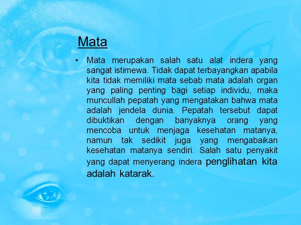 Mata Mata merupakan salah satu alat indera yang sangat istimewa. Tidak dapat terbayangkan apabila kita tidak memiliki mata sebab mata adalah organ yan