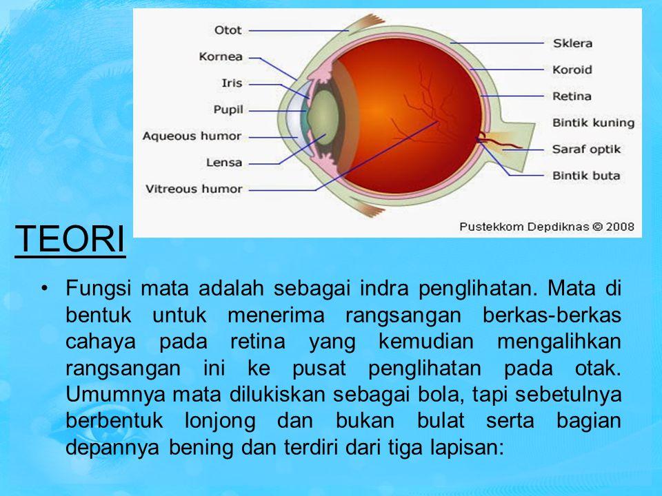 TEORI Fungsi mata adalah sebagai indra penglihatan. Mata di bentuk untuk menerima rangsangan berkas-berkas cahaya pada retina yang kemudian mengalihka
