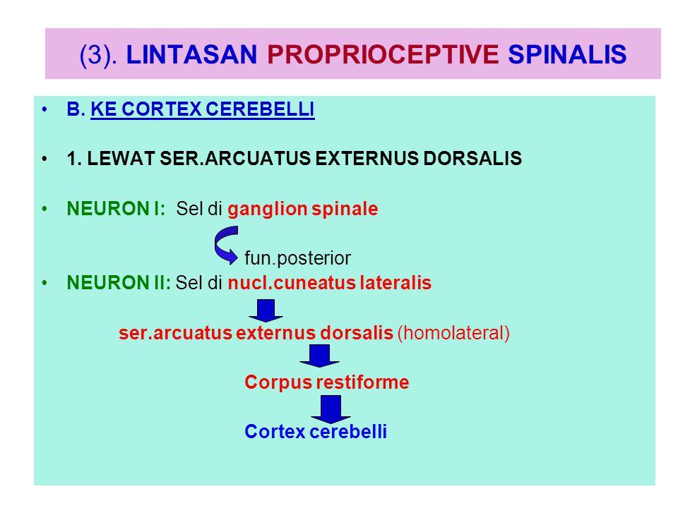 Lintasan proprioceptive