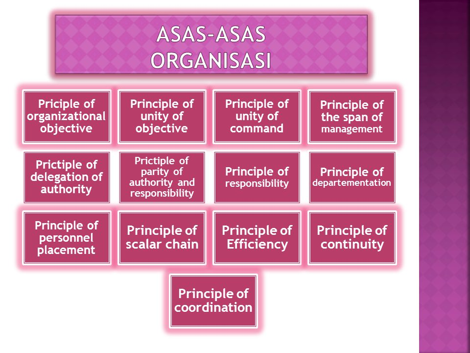 Priciple of organizational objective Principle of unity of objective Principle of unity of command Principle of the span of management Prictiple of delegation of authority Prictiple of parity of authority and responsibility Principle of responsibility Principle of departementation Principle of personnel placement Principle of scalar chain Principle of Efficiency Principle of continuity Principle of coordination