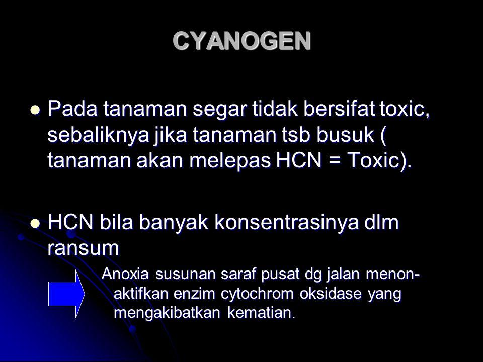 """CYANOGEN HCN – cyanida ( tanaman dalam bentuk """"Glukosida"""" HCN – cyanida ( tanaman dalam bentuk """"Glukosida"""" Bentuk glukosida Bentuk glukosida Amygdalin"""