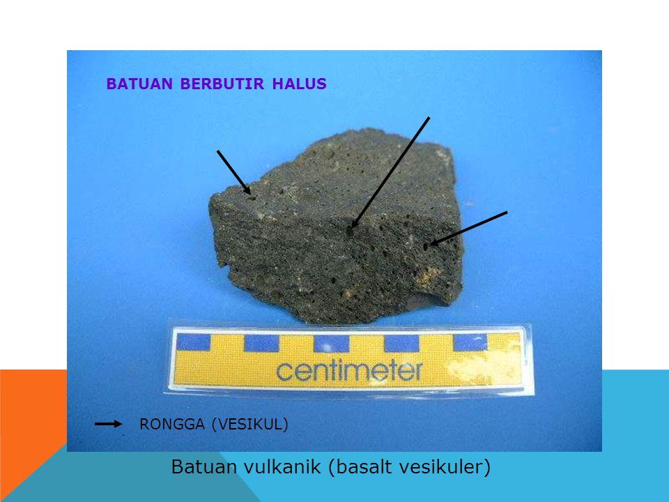 Batuan vulkanik (basalt vesikuler) BATUAN BERBUTIR HALUS RONGGA (VESIKUL)