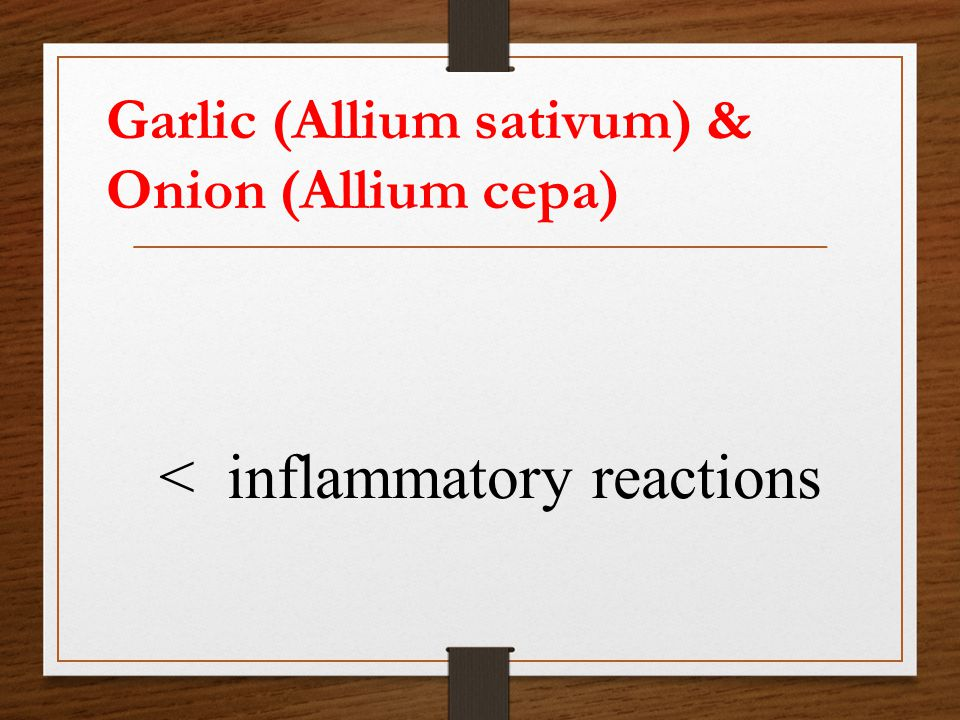 Garlic (Allium sativum) & Onion (Allium cepa) < inflammatory reactions