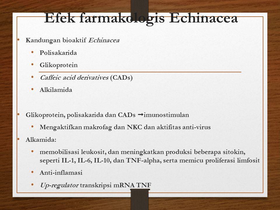 Efek farmakologis Echinacea Kandungan bioaktif Echinacea Polisakarida Glikoprotein Caffeic acid derivatives (CADs) Alkilamida Glikoprotein, polisakari