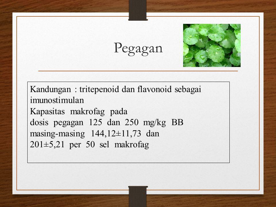 Pegagan Kandungan : tritepenoid dan flavonoid sebagai imunostimulan Kapasitas makrofag pada dosis pegagan 125 dan 250 mg/kg BB masing-masing 144,12±11