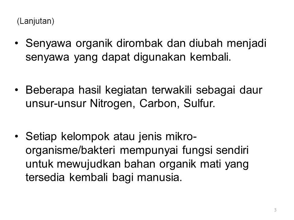 (Lanjutan) Senyawa organik dirombak dan diubah menjadi senyawa yang dapat digunakan kembali. Beberapa hasil kegiatan terwakili sebagai daur unsur-unsu
