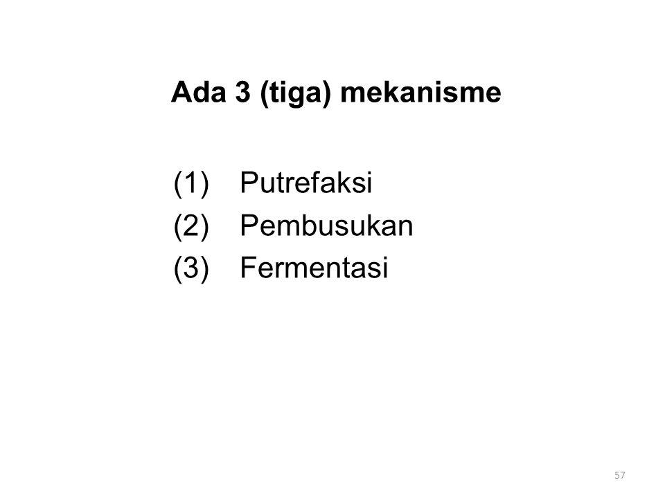Ada 3 (tiga) mekanisme (1)Putrefaksi (2)Pembusukan (3)Fermentasi 57
