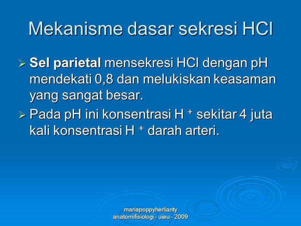 mariapoppyherlianty anatomifisiologi - uieu - 2009 Mekanisme dasar sekresi HCl  Sel parietal mensekresi HCl dengan pH mendekati 0,8 dan melukiskan keasaman yang sangat besar.