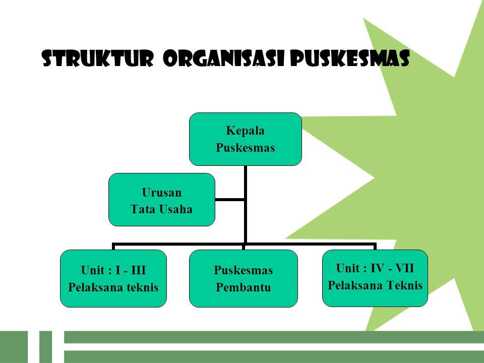 Struktur Organisasi Puskesmas Kepala Puskesmas Unit : I - III Pelaksana teknis Puskesmas Pembantu Unit : IV - VII Pelaksana Teknis Urusan Tata Usaha