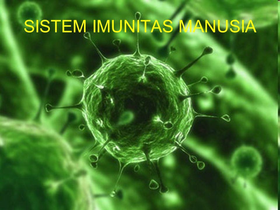 Sel-sel yang terlibat dalam sistem imun spesifik.