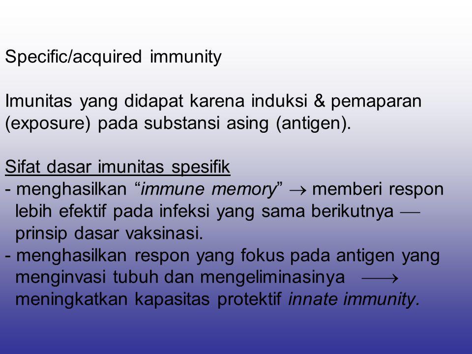 Specific/acquired immunity Imunitas yang didapat karena induksi & pemaparan (exposure) pada substansi asing (antigen). Sifat dasar imunitas spesifik -
