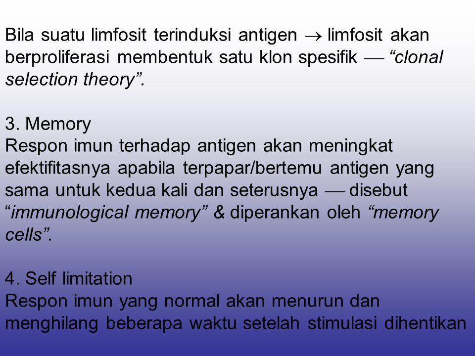 """Bila suatu limfosit terinduksi antigen  limfosit akan berproliferasi membentuk satu klon spesifik  """"clonal selection theory"""". 3. Memory Respon imun"""