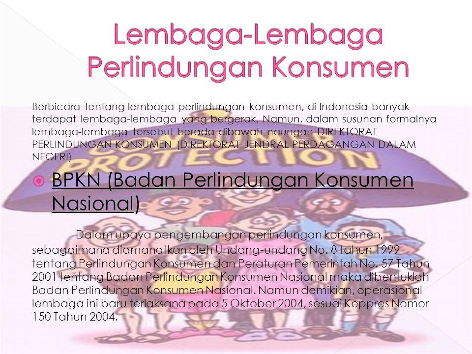 Berbicara tentang lembaga perlindungan konsumen, di Indonesia banyak terdapat lembaga-lembaga yang bergerak. Namun, dalam susunan formalnya lembaga-le
