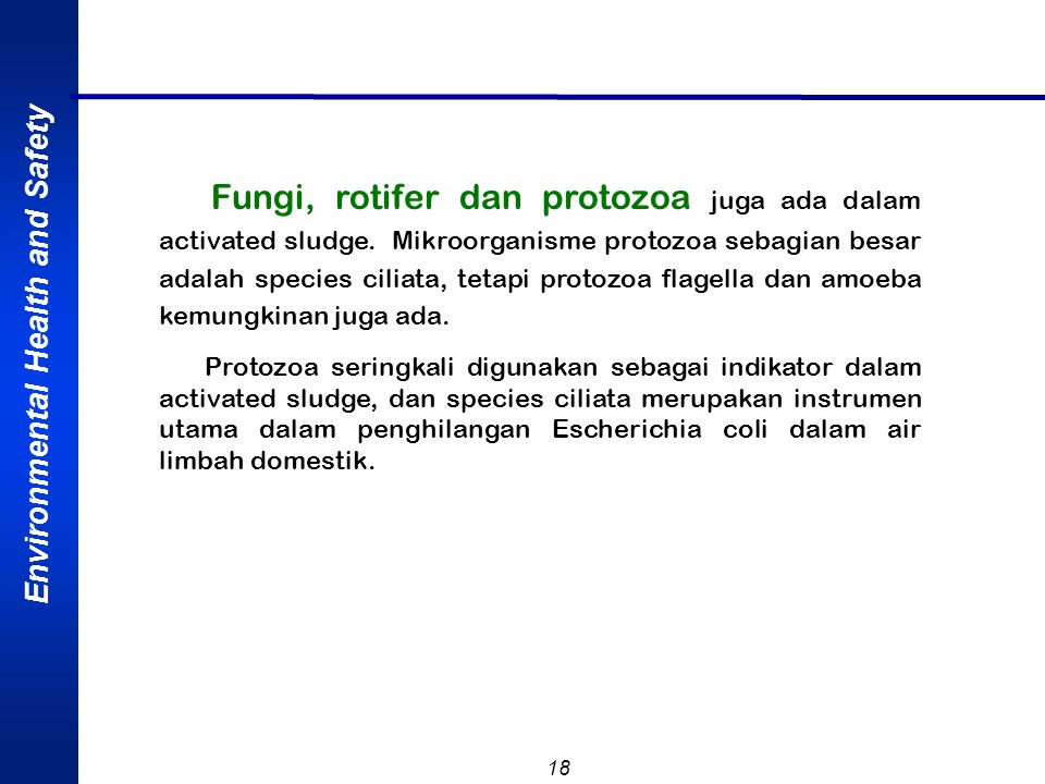 Environmental Health and Safety 18 Fungi, rotifer dan protozoa juga ada dalam activated sludge.