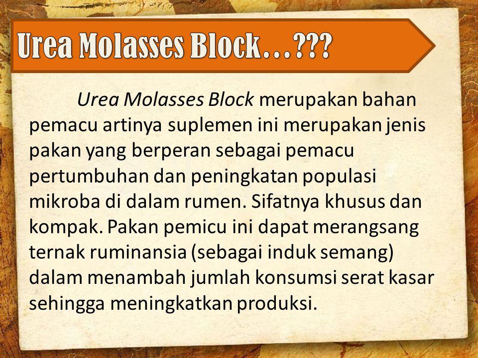 Urea Molasses Block merupakan bahan pemacu artinya suplemen ini merupakan jenis pakan yang berperan sebagai pemacu pertumbuhan dan peningkatan populasi mikroba di dalam rumen.