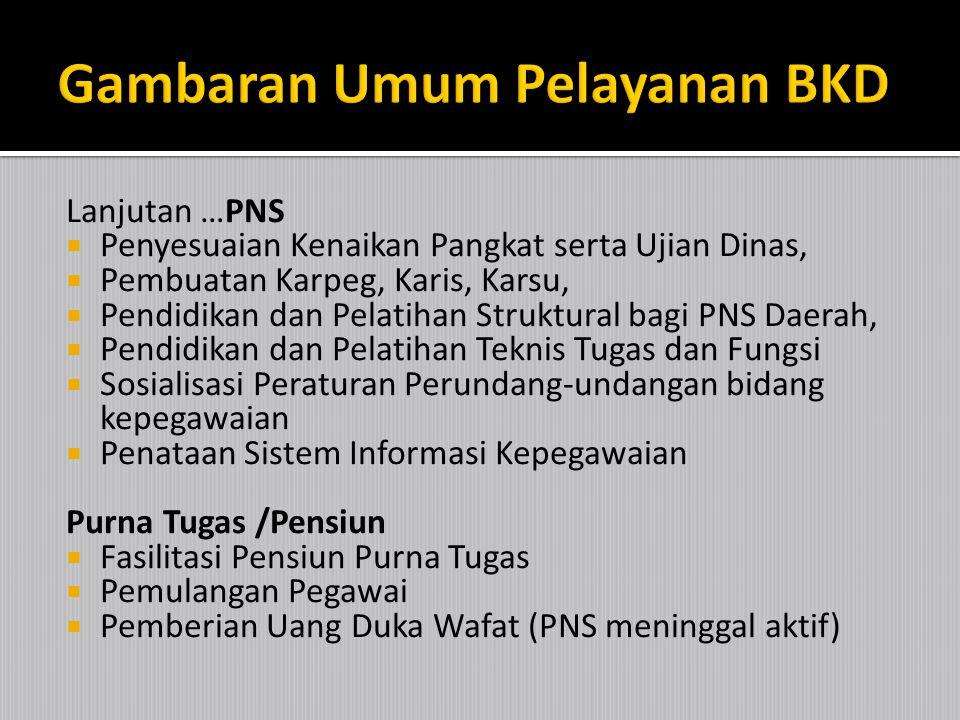 CPNS  Pengadaan CPNS  Diklat Pra Jabatan PNS  Penyusunan Rencana Pembinaan Karir PNS,  Penempatan PNS (Pindah Tugas /Keluar-masuk)  Penataan Sist