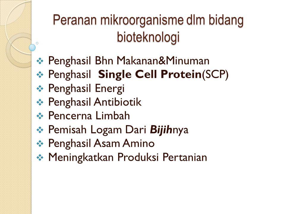 Peranan mikroorganisme dlm bidang bioteknologi  Penghasil Bhn Makanan&Minuman  Penghasil Single Cell Protein(SCP)  Penghasil Energi  Penghasil Antibiotik  Pencerna Limbah  Pemisah Logam Dari Bijihnya  Penghasil Asam Amino  Meningkatkan Produksi Pertanian