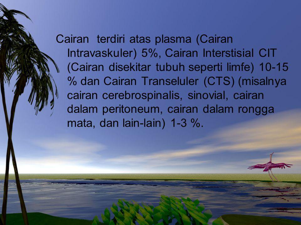 Cairan terdiri atas plasma (Cairan Intravaskuler) 5%, Cairan Interstisial CIT (Cairan disekitar tubuh seperti limfe) 10-15 % dan Cairan Transeluler (C