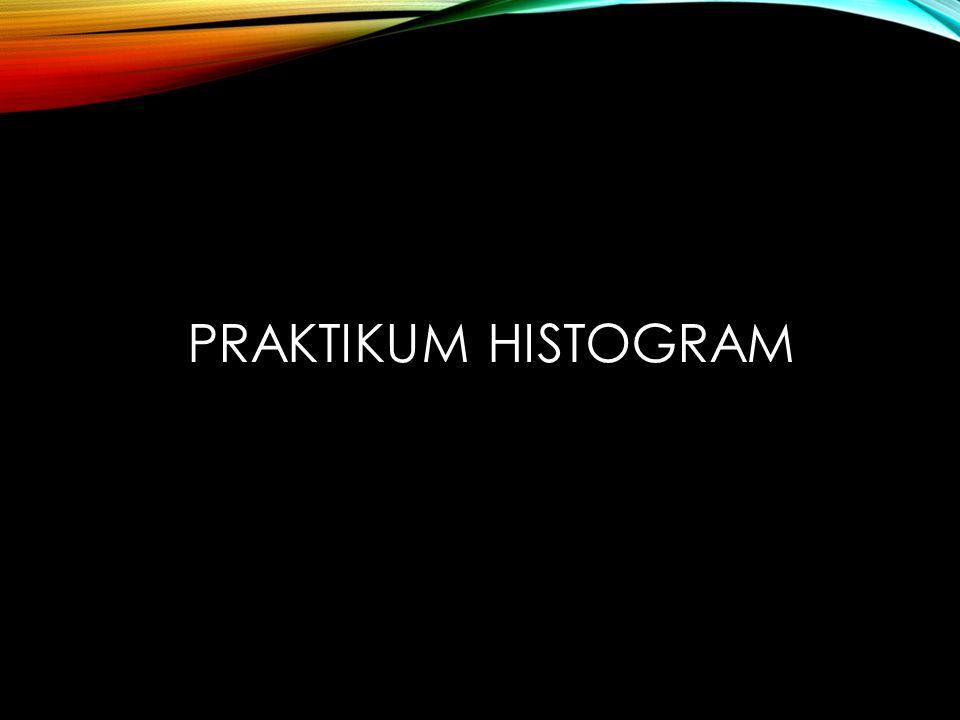 PRAKTIKUM HISTOGRAM