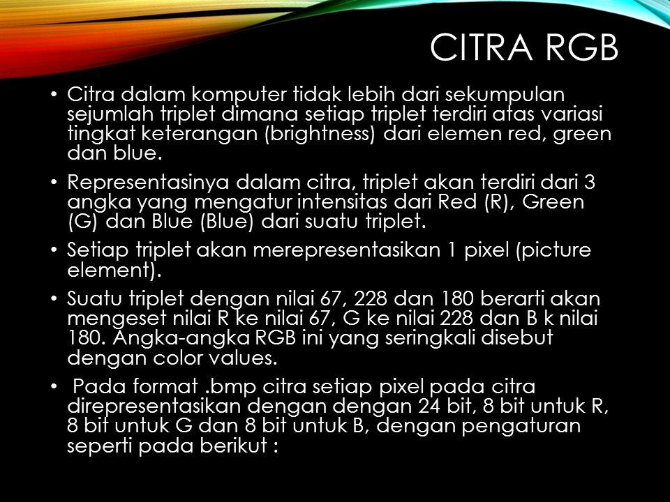 CITRA RGB Citra dalam komputer tidak lebih dari sekumpulan sejumlah triplet dimana setiap triplet terdiri atas variasi tingkat keterangan (brightness) dari elemen red, green dan blue.