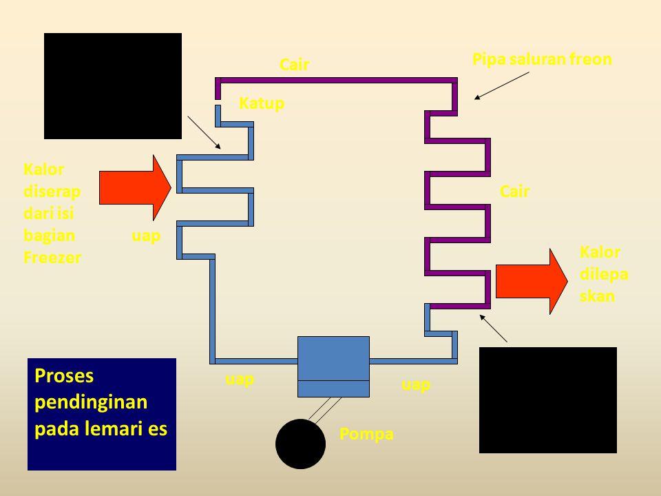 Pompa uap Katup Cair uap Kalor diserap dari isi bagian Freezer Kalor dilepa skan Uap diubah menjadi cairan freon kembali (mengembun).
