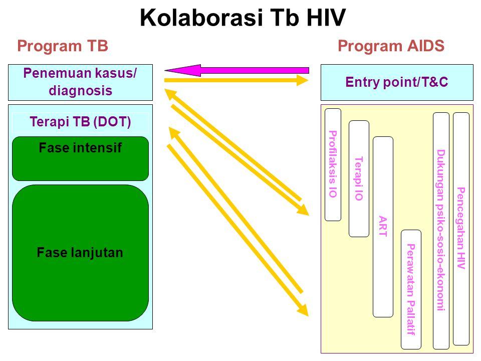 Kolaborasi Tb HIV Program AIDSProgram TB Profilaksis IO Terapi IO ART Perawatan Pallatif Intensive Phase Dukungan psiko-sosio-ekonomi Pencegahan HIV E