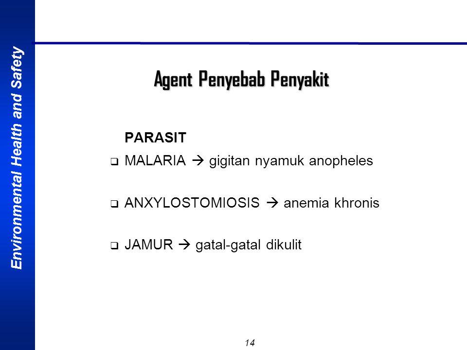 Environmental Health and Safety 13 Agent Penyebab Penyakit BAKTERI  TUBERKULOSIS  Paru  ANTRHRAX  kulit & paru  BRUCELLOSIS  sakit kepala, artra
