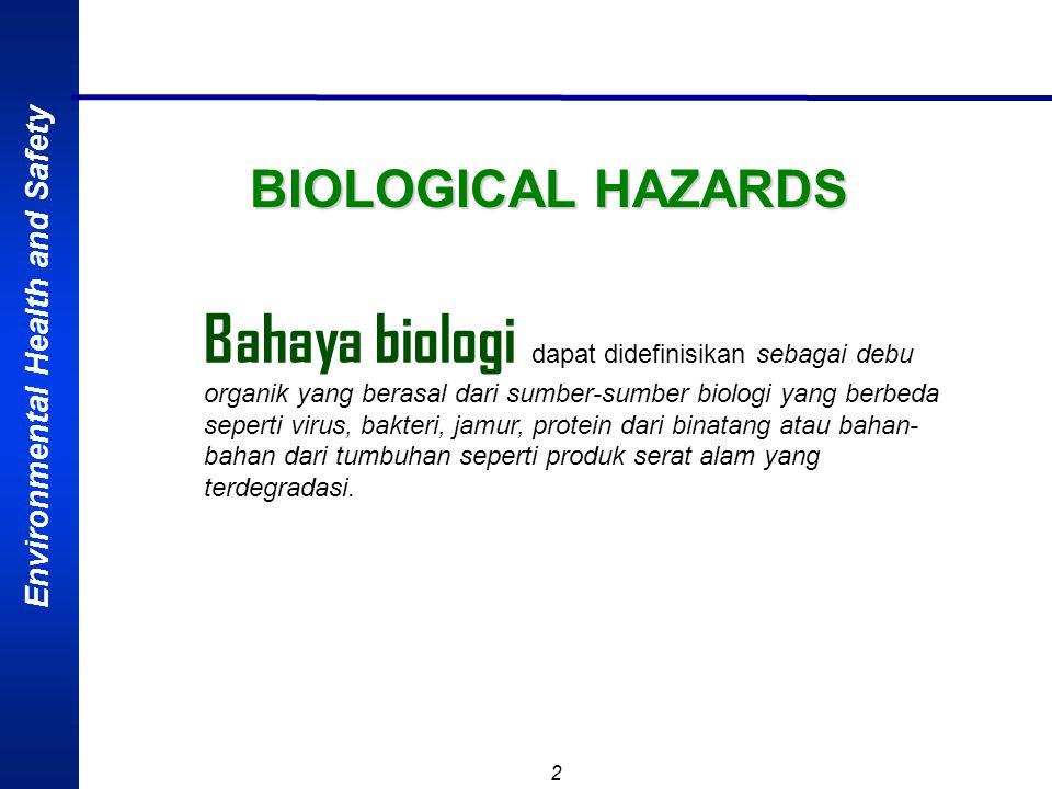 Environmental Health and Safety 12 Agent Penyebab Penyakit VIRUS  HUMAN IMMUNODEFISIENCY VIRUS (HIV)  menyebabkan penurunan daya kekebalan tubuh, ditularkan melalui: o Tranfusi darah yang tercemar o Tertusuk/teriris jarum/pisau yag terkontaminasi o Hubungan sexual o Luka jalan lahir waktu melahirkan  Pekerja berisiko: Pekerja RS Pekerja yang sering ganti-ganti pasangan