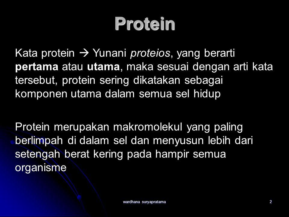 2 Kata protein  Yunani proteios, yang berarti pertama atau utama, maka sesuai dengan arti kata tersebut, protein sering dikatakan sebagai komponen utama dalam semua sel hidup Protein merupakan makromolekul yang paling berlimpah di dalam sel dan menyusun lebih dari setengah berat kering pada hampir semua organisme Protein