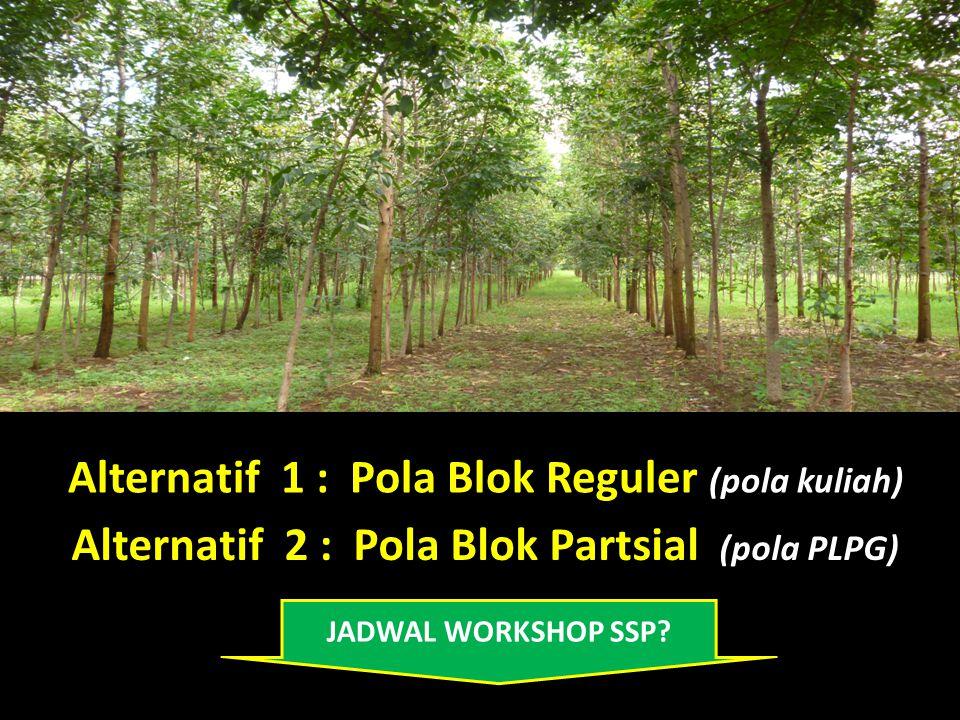 Alternatif 1 : Pola Blok Reguler (pola kuliah) Alternatif 2 : Pola Blok Partsial (pola PLPG) JADWAL WORKSHOP SSP?