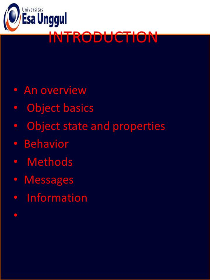 What is an Object.
