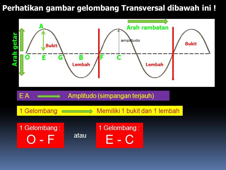 GELOMBANG TERBAGI 2 : 1.Gelombang Transversal Adalah Gelombang yang arah gerak/rambatnya tegak lurus terhadap arah getarnya. Perhatikan gambar ! Conto