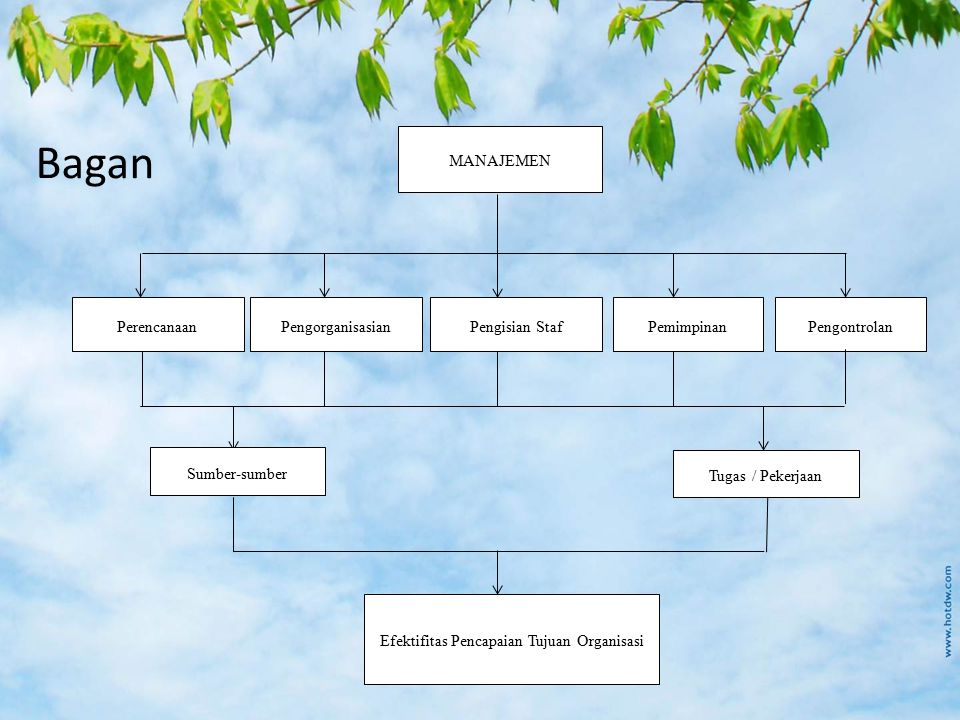 Bagan MANAJEMEN PerencanaanPengorganisasianPengisian StafPemimpinanPengontrolan Sumber-sumber Tugas / Pekerjaan Efektifitas Pencapaian Tujuan Organisa