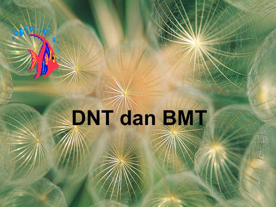 DNT dan BMT