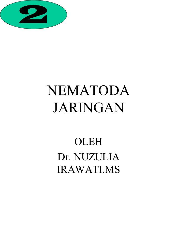 NEMATODA JARINGAN OLEH Dr. NUZULIA IRAWATI,MS 2