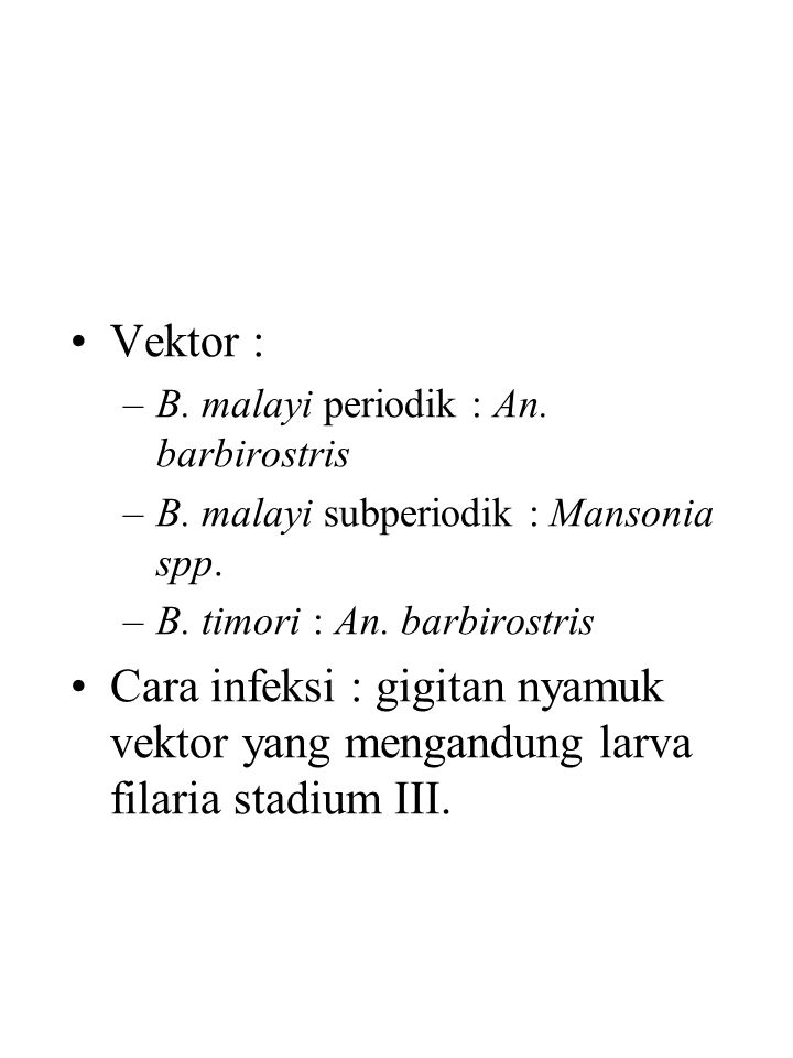 Vektor : –B.malayi periodik : An. barbirostris –B.