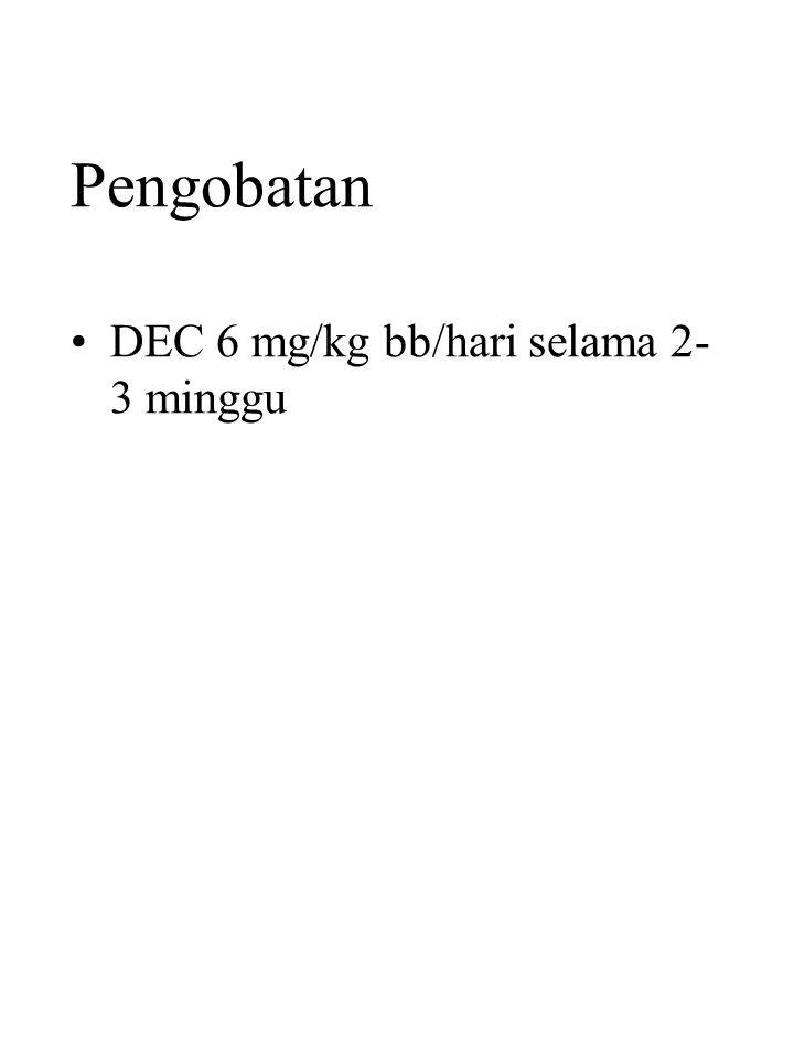 Pengobatan DEC 6 mg/kg bb/hari selama 2- 3 minggu