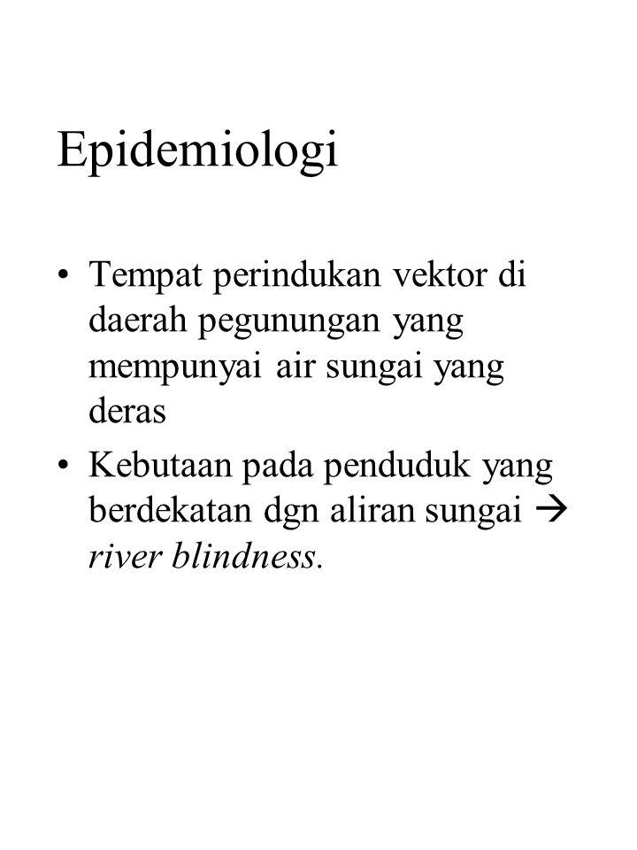 Epidemiologi Tempat perindukan vektor di daerah pegunungan yang mempunyai air sungai yang deras Kebutaan pada penduduk yang berdekatan dgn aliran sungai  river blindness.