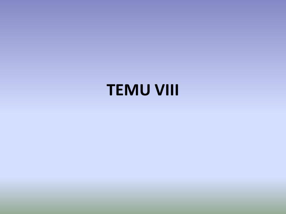 TEMU VIII