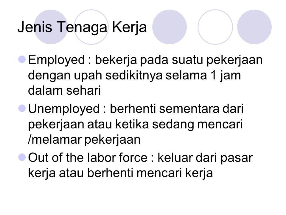 Jenis Tenaga Kerja Employed : bekerja pada suatu pekerjaan dengan upah sedikitnya selama 1 jam dalam sehari Unemployed : berhenti sementara dari pekerjaan atau ketika sedang mencari /melamar pekerjaan Out of the labor force : keluar dari pasar kerja atau berhenti mencari kerja