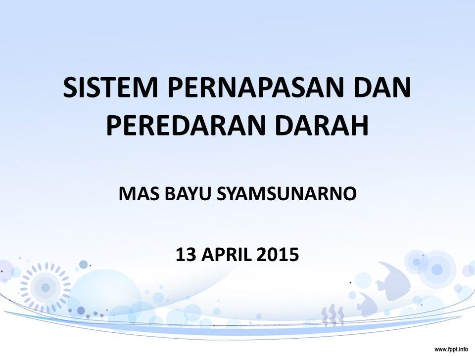 SISTEM PERNAPASAN DAN PEREDARAN DARAH MAS BAYU SYAMSUNARNO 13 APRIL 2015