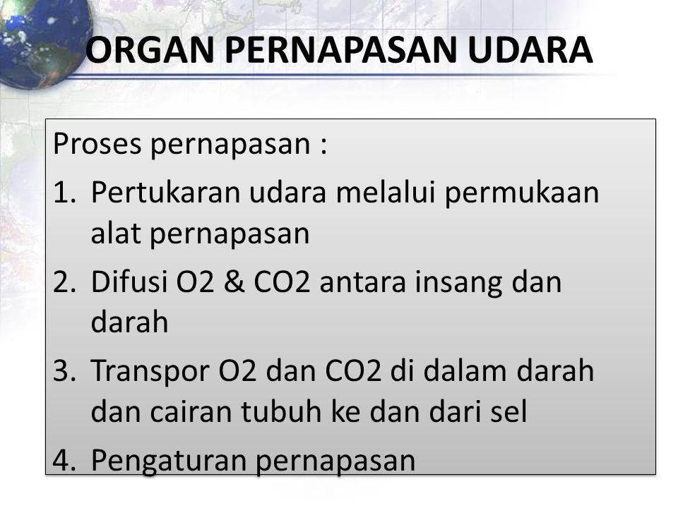 Proses pernapasan : 1.Pertukaran udara melalui permukaan alat pernapasan 2.Difusi O2 & CO2 antara insang dan darah 3.Transpor O2 dan CO2 di dalam dara