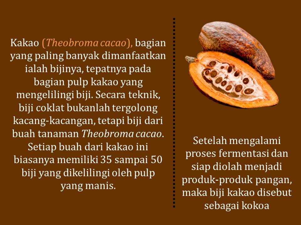 Kakao (Theobroma cacao), bagian yang paling banyak dimanfaatkan ialah bijinya, tepatnya pada bagian pulp kakao yang mengelilingi biji. Secara teknik,