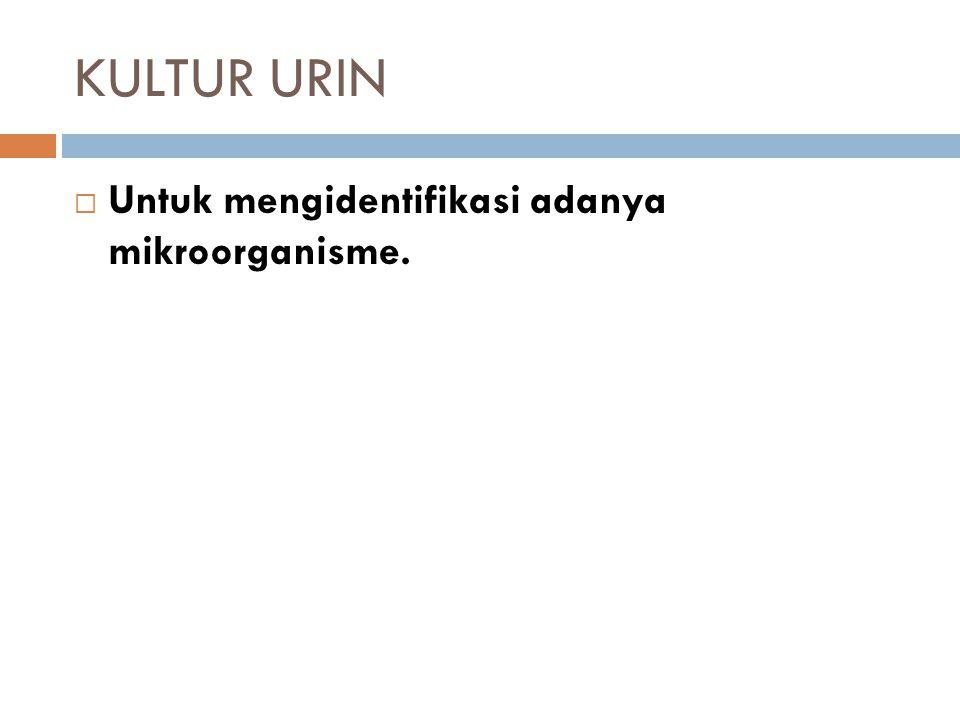 KULTUR URIN  Untuk mengidentifikasi adanya mikroorganisme.