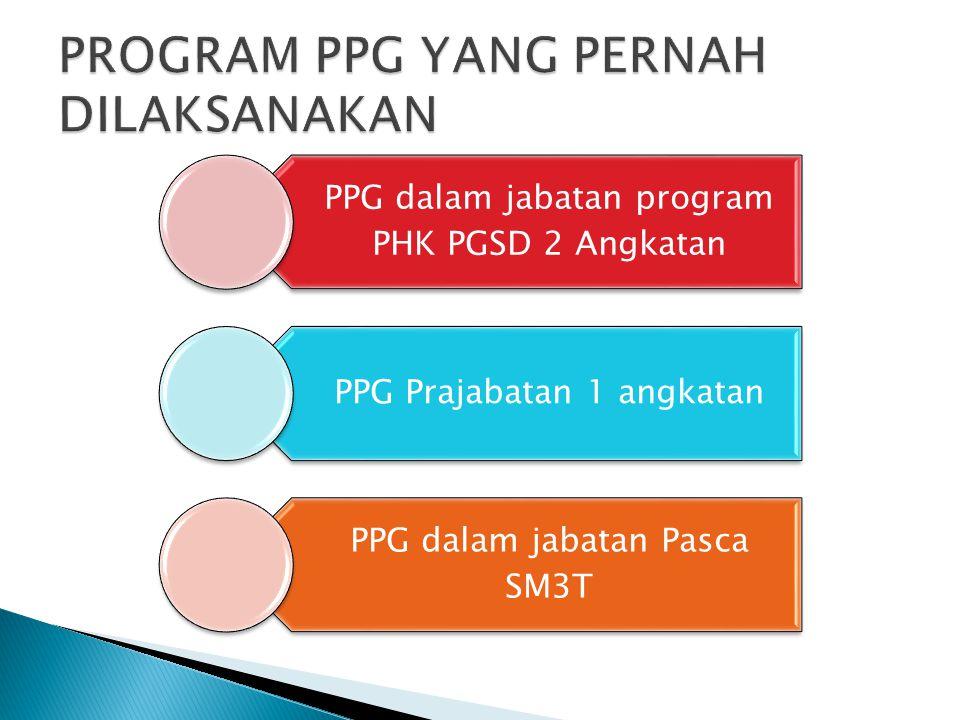 PPG dalam jabatan program PHK PGSD 2 Angkatan PPG Prajabatan 1 angkatan PPG dalam jabatan Pasca SM3T