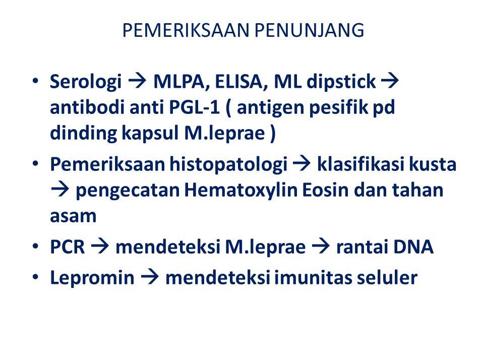 PEMERIKSAAN PENUNJANG Serologi  MLPA, ELISA, ML dipstick  antibodi anti PGL-1 ( antigen pesifik pd dinding kapsul M.leprae ) Pemeriksaan histopatologi  klasifikasi kusta  pengecatan Hematoxylin Eosin dan tahan asam PCR  mendeteksi M.leprae  rantai DNA Lepromin  mendeteksi imunitas seluler