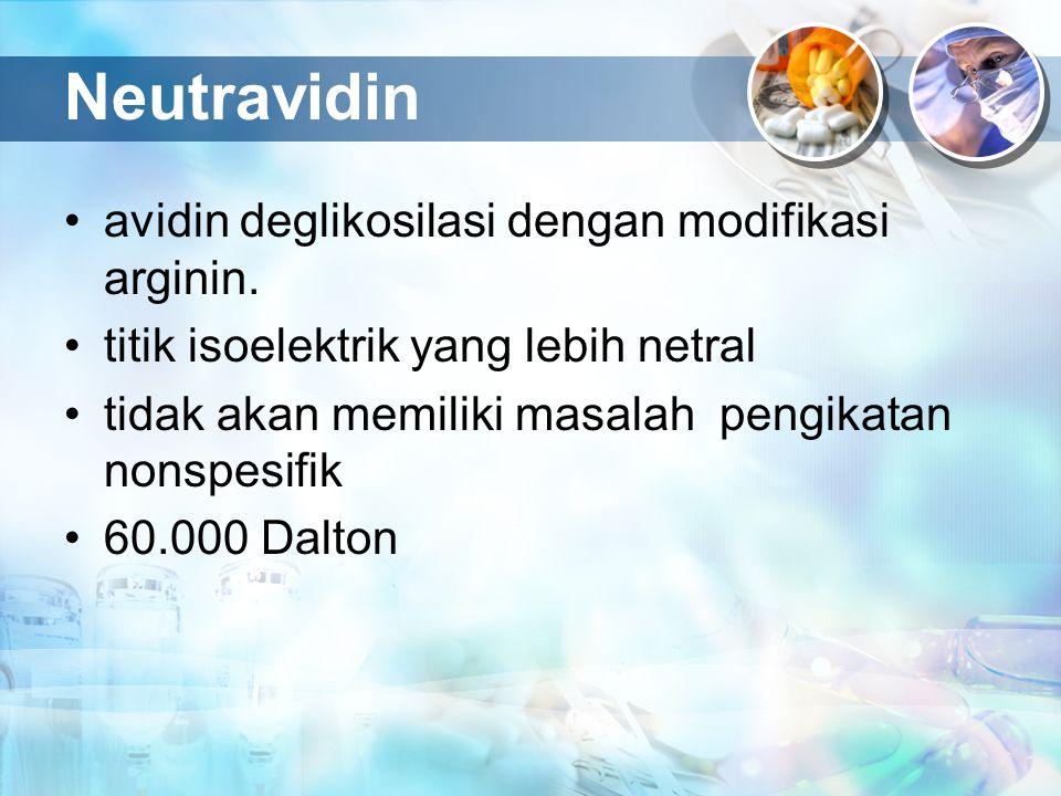Neutravidin avidin deglikosilasi dengan modifikasi arginin. titik isoelektrik yang lebih netral tidak akan memiliki masalah pengikatan nonspesifik 60.